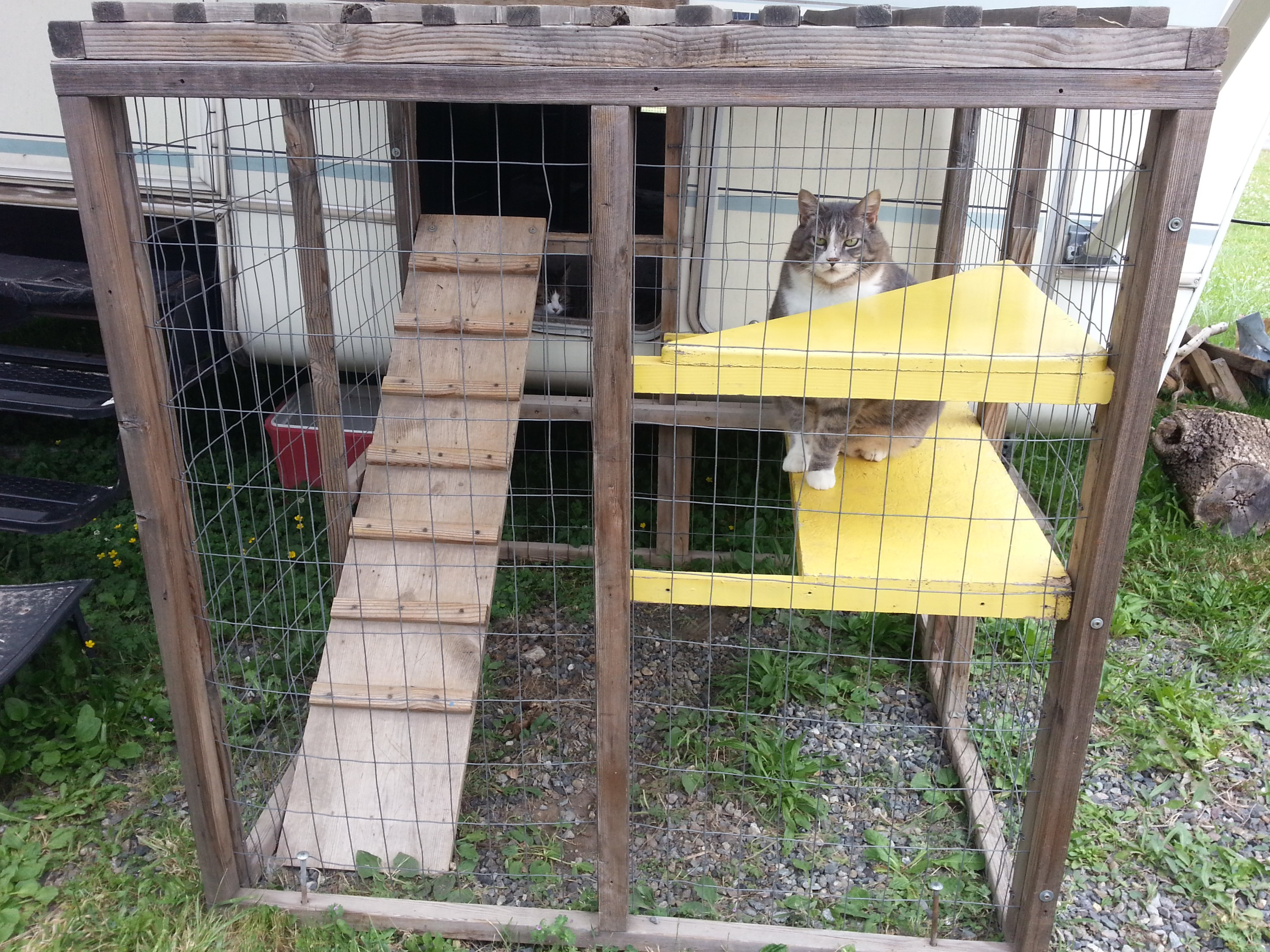 Building the Catio – Sailing On Dry Land